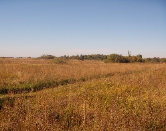 Вид на русское поле. 3.800.000р.