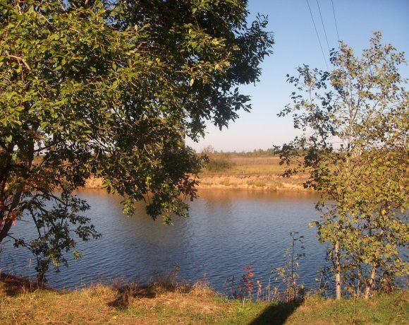 Большой участок с видом на поле 3.250.000р.